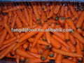 200g and up big size carrots