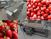 vegetable and fruit drying equipment/small fruit drying machine/industrial fruit drying machine
