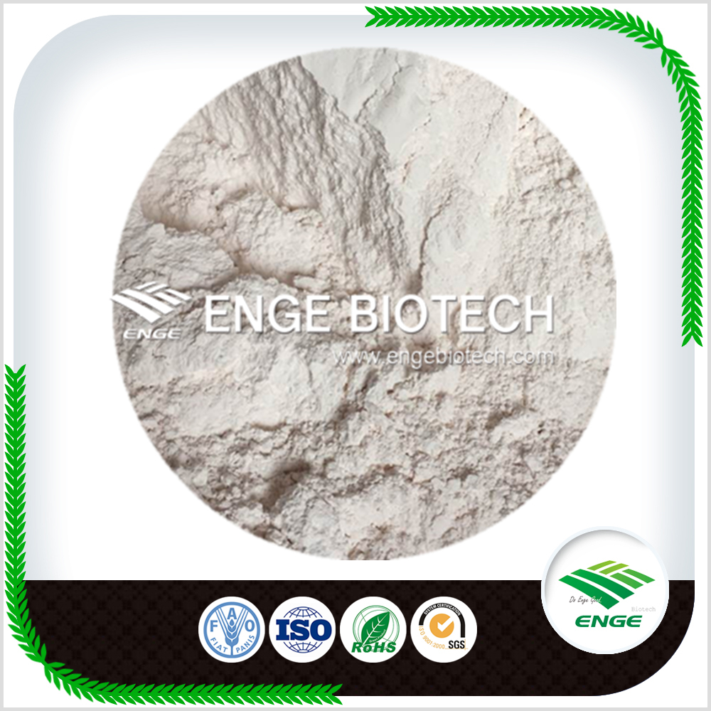 Agrochemicals for Wide Use Carbendazim 50 WP 80%WP Carbendazim 50 SC