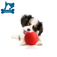 Red Rubber Pet Toy Smart Dog Chew Ball Cozy Cat Ball Toys