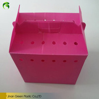2017 Green PP Plastic Corrugated Correx Gift Packaging Box