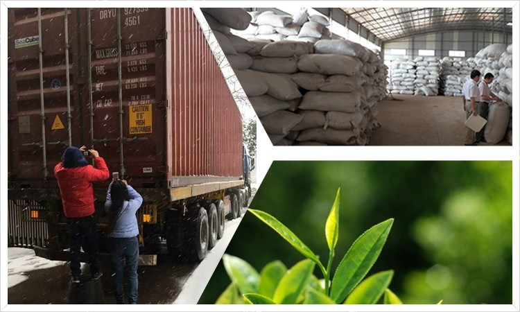 4011 tea bulk new packing for Morocco market