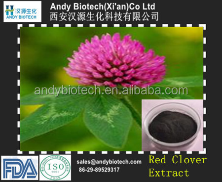Pure Naturl Plant Extract Red Clover P.E. 40% Total Isoflavones