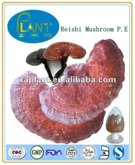 organic red reishi mushroom extract powder; 1%-4% Triterpenoid