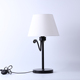 Multi-function soft light & LED reading spotlight table lamp