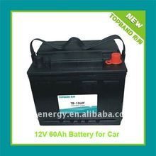 New Arrival LiFePO4 DC12V Battery for Motor with BMS Protection