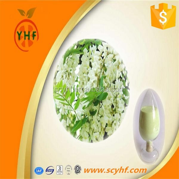sophora japonica extract natural medicine for blood circulation rutin