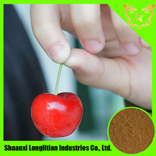 super Acerola cherry extract, natural vitamin c in bulk supply