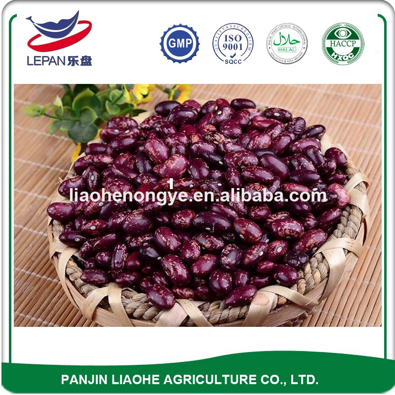 Wholesale Price New Stock Red Speckled Sugar Beans