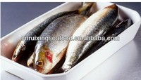 Frozen Whole Sardine ,sardine frozen food , Frozen Sardine Fish 80-100