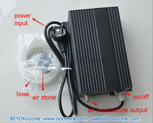 FM-C600 Portable Cold Corona Discharge Ozone Generator for Swimming Pool