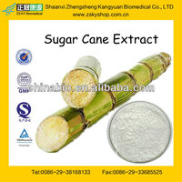 Sugar Cane Wax Extract Octacosanol Policosanol with High Quality