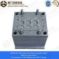 Xiamen A.S.E OEM Manufacturing Mold Parts for injection molding mixer