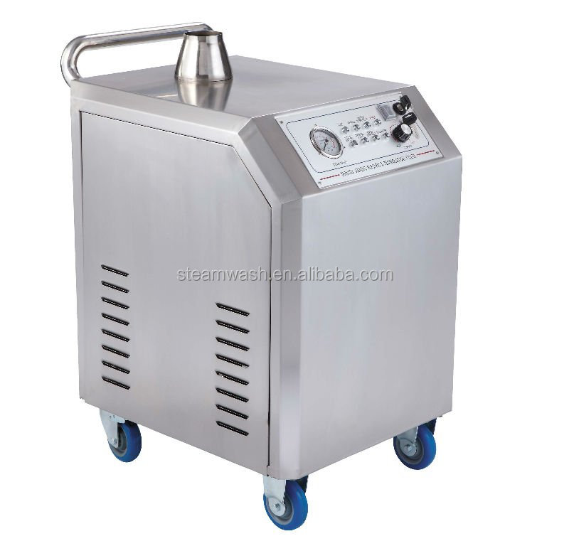 Portable steam car engine washing machine used by LPG