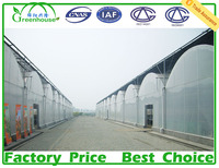 single layer and multi span plastic greenhouse for sale