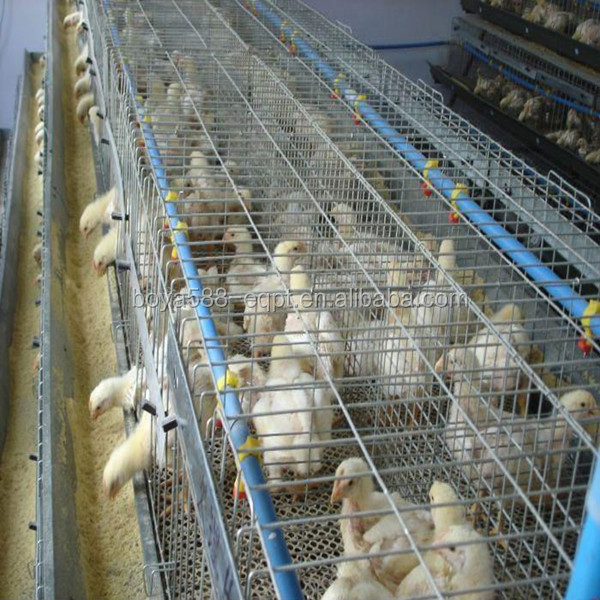 Poultry Farm In Ghana Chicken Cages For Sale
