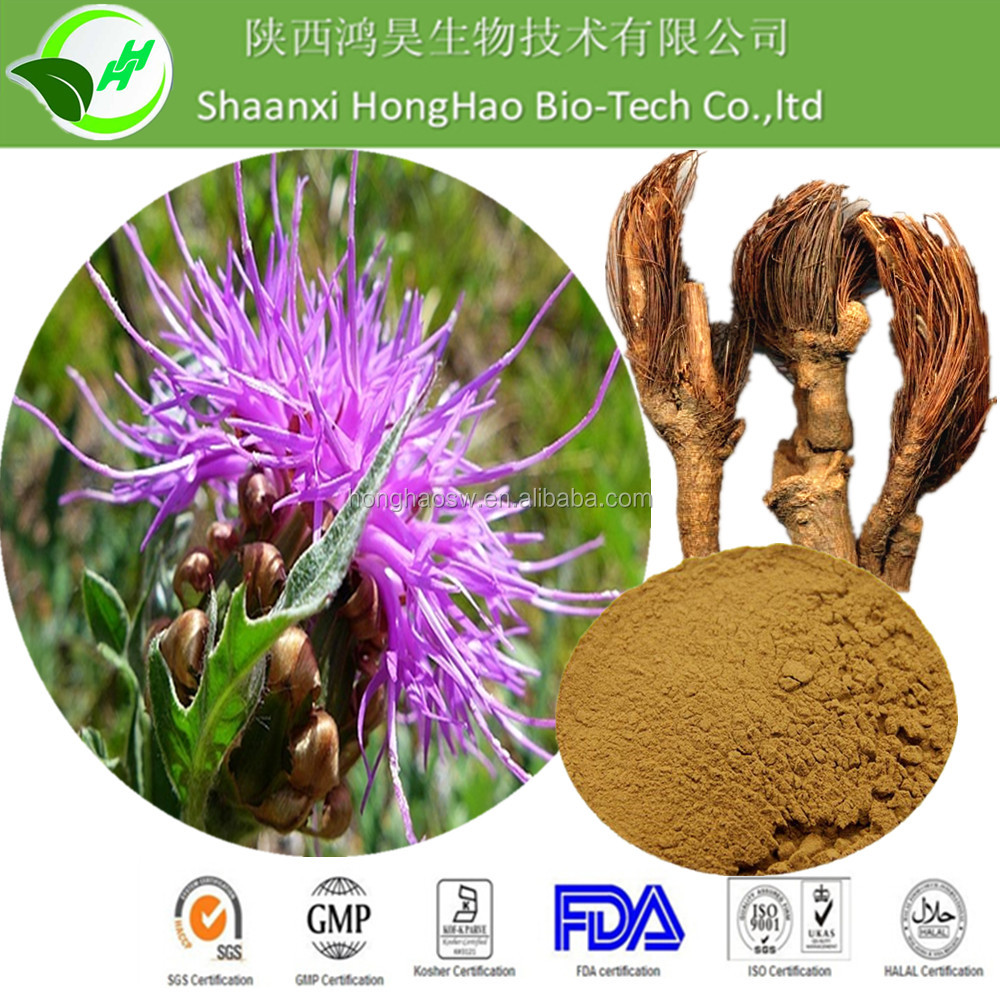 HongHao Supply High Quality Maral root Extracts/Leuzea carthamoides Extracts/Stemmacantha carthamoides Extracts