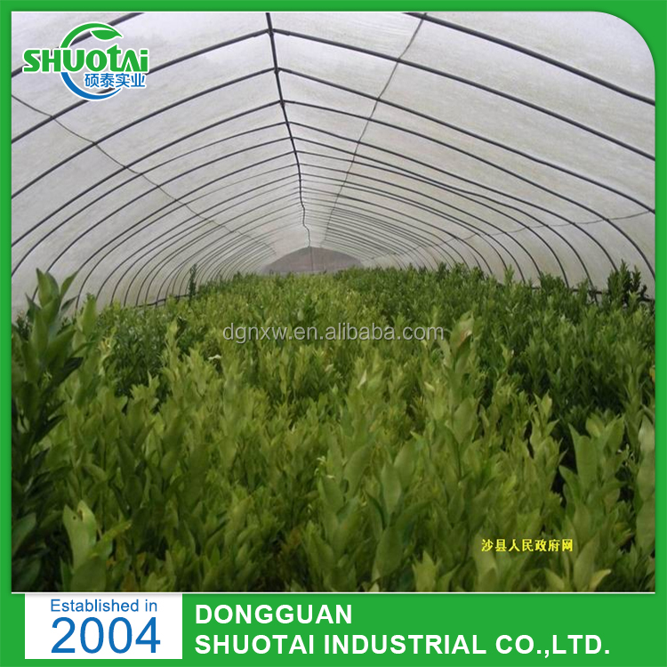 UV Stabilized 100% Virgin Hdpe Plastic Film For Agricultural Mushroom Tunnel Greenhouse Used