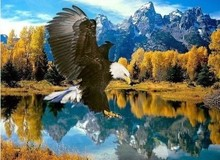 Plastic paintings of Flying eagle shipping international