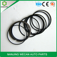 White hair in this field performance car B15 piston ring set