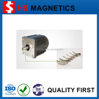 Rare Earth Permanent Magnetic Neodymium Strong Magnet DC Motor