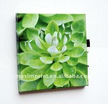 30X30CM Green Lotus Flower Dry Erase Canvas Art Painting With A Pen