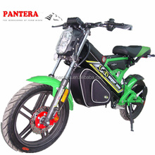 PT- E001 EEC New Model Cheap Good Quality Nice High Power Advertising Bike