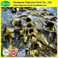 Wakame and Kelp Extract/ Undaria pinnatifida and Laminaria japonica,Fucoxanthin UV 10%-40%