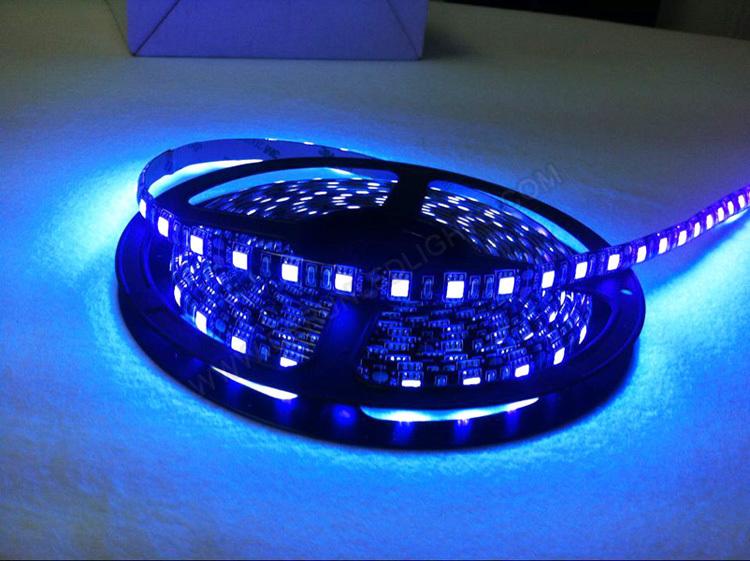 Black Light Led String Lights : Black Light 300leds Non-waterproof 5 Meter 5050 Led Rope Light Uv - Buy 5050 Led Rope Light Uv ...