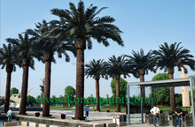 Large artificial decorative tree metal plastic material fake date palm trees for home&garden
