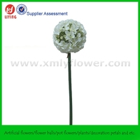 Round Single Stem Flower Without Leaves