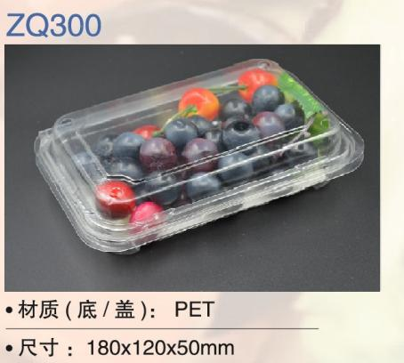 Clear Plastic/ PET disposable food takeaway box/container