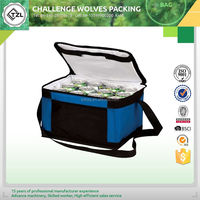 Outdoor travel insulated cooler bag