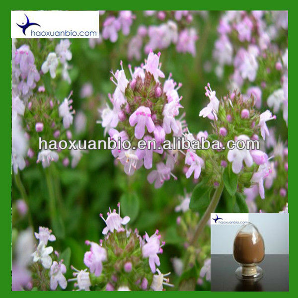 Melissa officinalis Extract Powder Total Isoflavones 5%