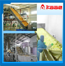 Automatic vegetable and fruit washing sorting packing line
