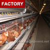 High quality chicken poultry farm equipment for sale