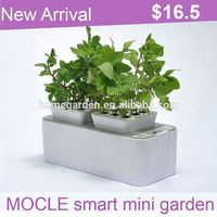 Smart Mini Garden new products agents wanted in Germany