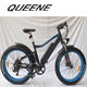 QUEENE/Classical American Style 26 Inch fat tire 500W 48V beach electric bike for ladies