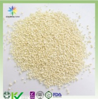 Freeze dried garlic cube FD granulated garlic for healthy food ingredients