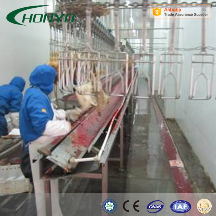 Full Stainless Steel Structure Halal poultry CHICKEN SLAUGHTER AND ABATTOIR MACHINE LINE