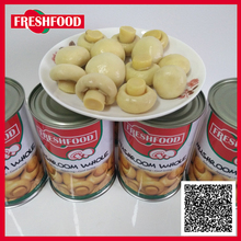 Halal canned whole mushroom 400g to Middle East