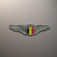 custom enamel wing pin badge for India market
