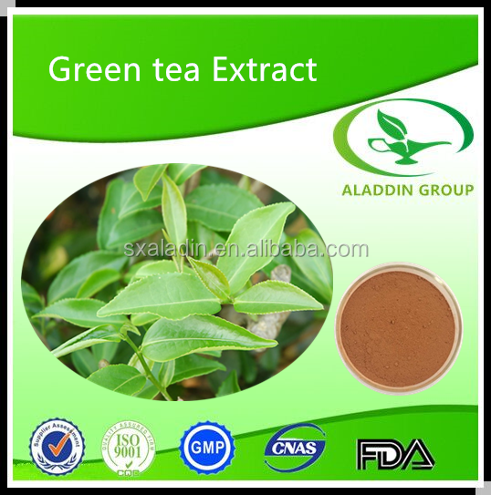 Premium Organic White Tea Extract in Bulk Stock Welcome Inquiry