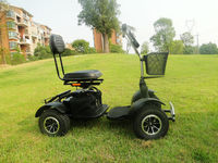 single seat golf buggy for sales