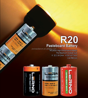 R20 0% Lead Zinc Chloride Dry Battery D size made in china