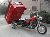 Gold supplier China 150cc rear wheel truck cargo tricycle