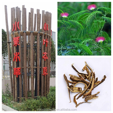 factory supply food supplements functional foods silk tree Albizia Bark extract