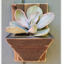 Handmade reclaimed wooden hanging pole - mini format for succulents or air conditioners! Wall decor Vertical garden