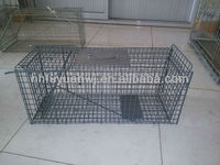 various latest design galvanized metal dog pet cages for sale (factory)