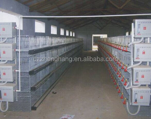H type best price poultry farm egg layer chicken cages (lydia : 0086-15965977837)